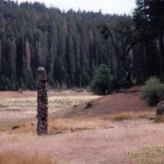 Chimney's left standing in the eastern portion of Jenkinson Lake